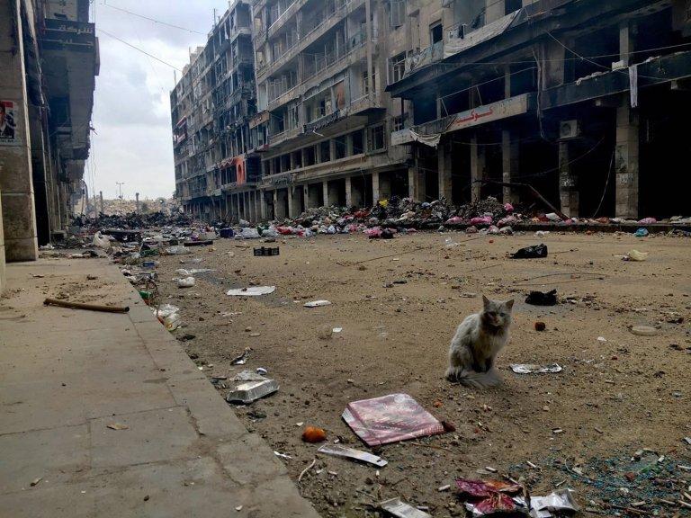 destruction Aleppo